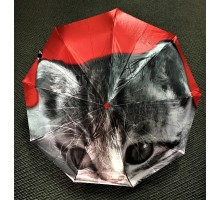 Зонт женский автомат Lantana Котик