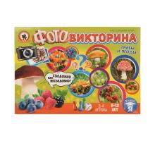 Фотовикторина Русский стиль Грибы и ягоды