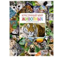 Энциклопедия Махаон Красочный мир животных