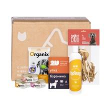 Petshop Box подарочный набор для любимого хвостика