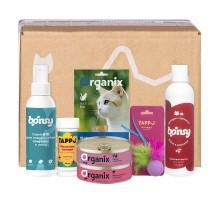 Petshop Box подарочный набор для котят